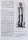 A DICTIONARY OF MODERN SCULPTURE de ROBERT MAILLARD , 1962