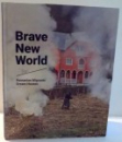 BRAVE NEW WORLD, ROMANIAN MIGRANTS, DREAM HOUSES by RALUCA BETEA, BEATE WILD , 2016