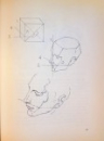 BRIDGMAN`S COMPLETE GUIDE TO DRAWING FROM LIFE by GEORGE B. BRIDGMAN , 1999