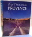 CE QU ' IL FAUT VOIR EN PROVENCE , 1995