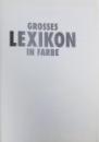 GROSSES LEXIKON IN FARBE  - MIT NEUER RECHTSCHREIBUNG