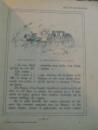 LES DOUZE FILLES DE LA REINE MAB , ILLUSTRATIONS DE HENRY MORIN , QUATRIEME EDITIONS