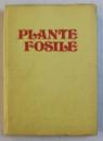 PLANTE FOSILE de IUSTINIAN PETRESCU SI OVIDIU DRAGASTAN , 1981