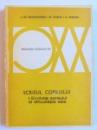 SCRISUL COPILULUI  I . EVOLUTIA SCRISULUI SI DIFICULTATILE SALE de J. DE AJURIAGUERRA...A. DENNER , 1980