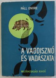 A VADDISZNO ES VADASZATA  ( PORCUL MISTRET SI REPRODUCEREA LUI IN SALBATICIE ) de PALL ENDRE , 1966