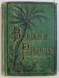 BIBLE PICTURES ; or LIFE - SKETCHES of LIFE - TRUTHS by GEORGE B . IDE , illustrated , 1875