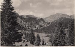 BUCEGII VAZUTI DIN PREDEAL , CARTE POSTALA , 1942