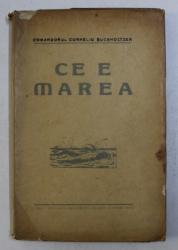 CE E MAREA ? de CORNELIU BUCHHOLTZER , 1925
