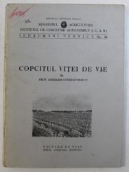 COPCITUL VITEI DE VIE de GHERASIM CONSTANTINESCU , 1951