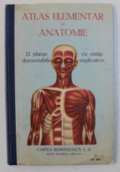 CORPUL OMENESC - ATLAS ELEMENTAR DE ANATOMIE - 12 PLANSE DEMONTABILE CU NOTITE EXPLICATIVE , EDITIE INTERBELICA