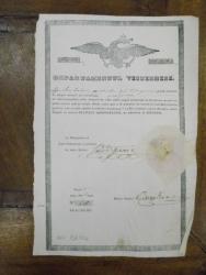 Departamentul visteriei, Stroe Stan din corporatia baiangiilor, Bucuresti 1846