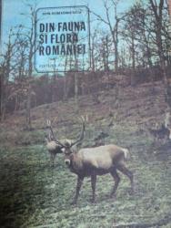 DIN FAUNA SI FLORA  ROMANIEI- ION SIMIONESCU, BUC. 1981