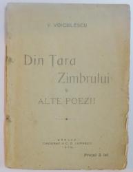 DIN TARA ZIMBRULUI SI ALTE POAEZII de V. VOICULESCU , 1918