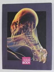 EXPOZITIA THE HUMAN BODY , 2013