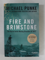 FIRE AND BRIMSTONE - THE NORTH BUTTE MINING DISASTER OF 1917 by MICHAEL PUNKE , 2016