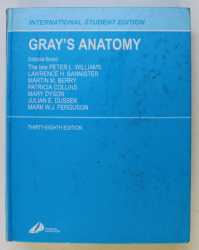 GRAY ' S ANATOMY , THE ANATOMICAL BASIS OF MEDICINE AND SURGERY , THIRTY - EIGHT EDITION , by PETER L. WILLIAMS ,  1995 *COTOR LIPIT CU SCOTCH