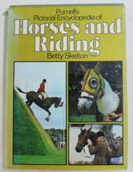 HORSES AND RIDING by BETTY SKELTON , 1980