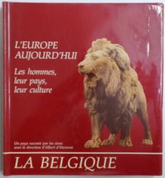 L' EUROPE AUJOURD' HUI - LES HOMMES , LEUR PAYS , LEUR CULTURE  - LA BELGIQUE - UN PAYS RACONTE PAR LES SIENS SOUS LA DIRECTION D' ALBERT D' HAENENS , 1991