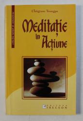 MEDITATIE IN ACTIUNE de CHOGYAM TRUNGPA , 2004