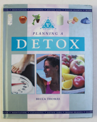 PLANNING A DETOX by BECCA THOMAS , 2002