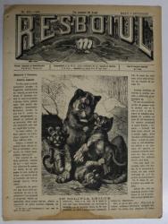 RESBOIUL  - ZIAR CU APARITIE ZILNICA , IN BUCURESTI , NR. 922 , MARTI  , 5 FEBRUARIE , 1880 , PREZINTA PETE