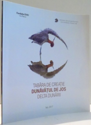 TABARA DE CREATIE DUNAVATUL DE JOS, DELTA DUNARII de FELIX AFTENE , 2017