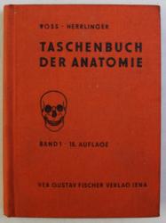 TASCHENBUCH DER ANATOMIE , BAND I von HERMANN VOSS , ROBERT HERRLINGER , 1977