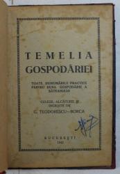TEMELIA GOSPODARIEI  - TOATE INDRUMARILE PRACTICE PENTRU BUNA GOSPODARIE A SATEANULUI de G. TEODORESCU  - BORCA , 1942