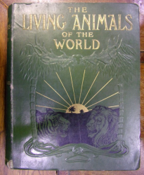 THE LIVING ANIMALS OF THE WORLD de C.J. CORNISH , 1906