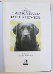 THE ULTIMATE LABRADOR RETRIEVER by HEATHER WILES FONE , 1997