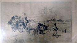 Theodor Aman, Car cu boi