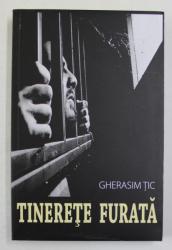 TINERETE  FURATA , roman cronica de GHERASIM TIC , 2017