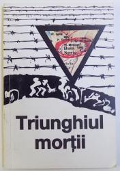 TRIUNGHIUL MORTII - BAIA SPRIE 1950-1954 de AUREL CIOLTE si VALERIU ACHIM, 2000