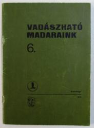 VADASZHATO MADARAINK ( PASARI CARE POT FI VANATE ) , 1974