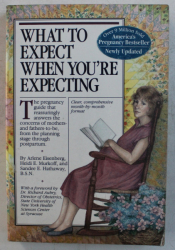 WHAT TO ESPECT WHEN YOU ' RE EXPECTING by ARLENE EISENBERG ... SANDEE E. HATHAWAY , 1996