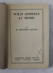 WILD ANIMALS AT HOME by H. MORTIMER BATTEN , 1939