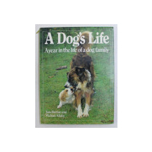 A DOG ' S LIFE , A YEAR IN THE LIFE OF A DOG FAMILY by JANE BURTON and MICHAEL ALLABY , 1986