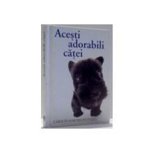 ACESTI ADORABILI CATEI , 2004