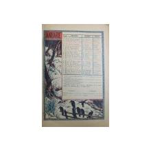 ALAMACHUL  ZIARELOR ADEVERUL SI DIMINEATA , 1930
