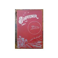 ALBUM FOTOGRAFII - SOUVENIR WIEN , 1903
