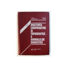 ANATOMIA COMPARATIVA SI TOPOGRAFICA A ANIMALELOR DOMESTICE de E . PASTEA ...V. COTOFAN , 1978
