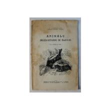 ANIMALE PRODUCATOARE DE BLANURI de C. LACRITEANU , 1933