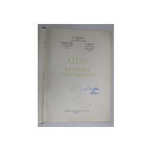 ATLAS DE ANATOMIE COMPARATIVA, VOL. I de VASILE GHETIE, EUGEN PASTEA, ILIE RIGA, BUC. 1954