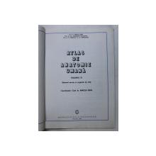 ATLAS DE ANATOMIE UMANA DE MIRCEA GH. IFRIM  VOL 3  BUCURESTI 1985