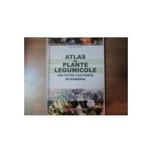 ATLAS DE PLANTE LEGUMICOLE MAI PUTIN CULTIVATE IN ROMANIA de ELENA MARIA DRAGHICI , Bucuresti 2004