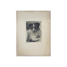 AUREL BORDENACHE - CATEL, CODLEA 1959