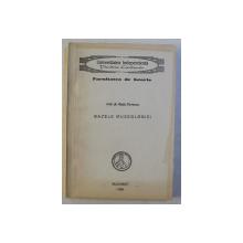 BAZELE MUZEOLOGIEI de RADU FLORESCU , 1993
