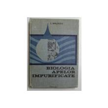BIOLOGIA APELOR IMPURIFICATE - BAZELE BIOLOGICE ALE PROTECTIEI APELOR de IOAN  MALACEA , 1969