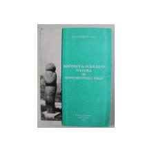 BISTRITA - NASAUD , NATURA SI MONUMENTELE SALE de IOAN CHINTAUAN , 1997, PREZINTA HALOURI DE APA *