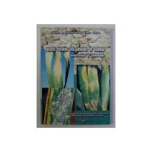 BOLILE FOLIARE ALE GRAULUI IN OLTENIA - BIOECOLOGIE SI COMBATERE de EMILIA BANITA ...C . NAIDIN , 2002